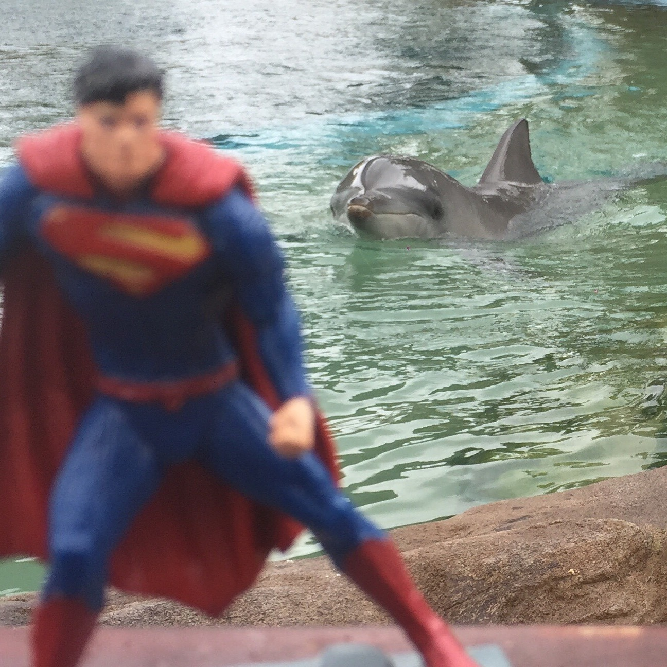 My travel buddy – Superman