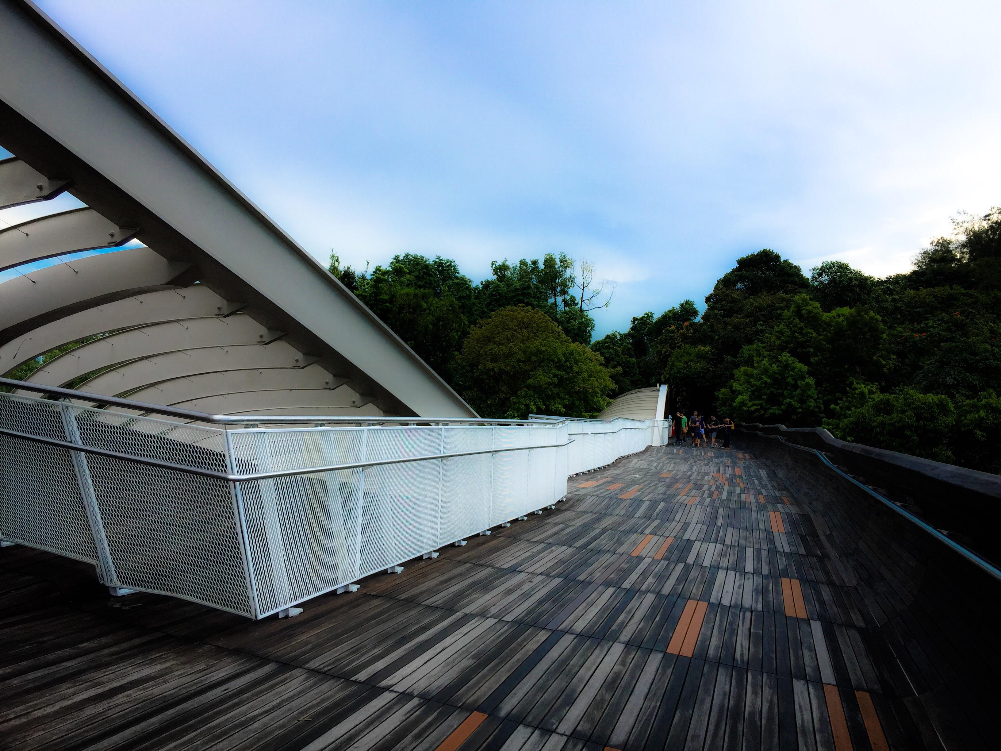 Henderson Waves Bridge